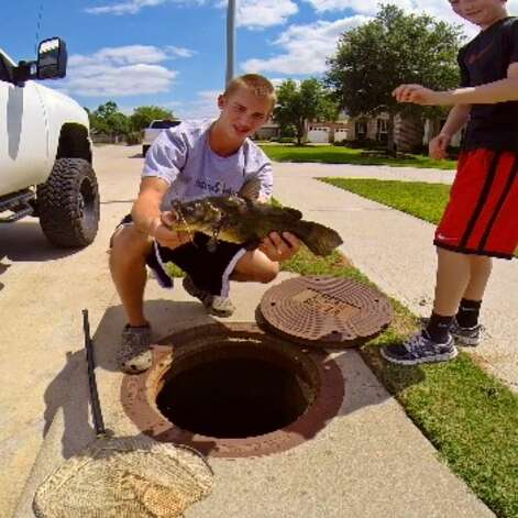 """Kyle """"The Fish Whisperer"""" Naegeli of Katy is a bit of daredevil when it comes to fishing. The 16 year old has shared videos to YouTube showing him catching fish in his neighborhood sewer, feeding fish in a nearby pond from his mouth, and snatching turtles out of the water by hand. Check out his continuing angling antics at https://www.youtube.com/user/fishboy242. Photo: Kyle Naegeli"""