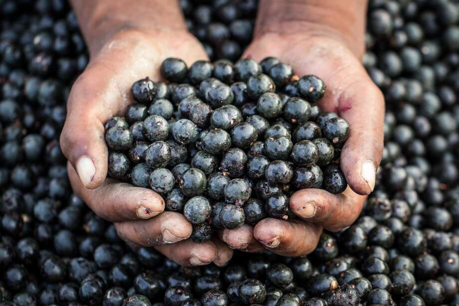 "Açaí (ah-SIGH-eee):A berry-like fruit that's commonly touted as a super food because of its antioxidants. Audio: Click here to hear the term ""Açaí."" Photo: Paulo Neves De Oliveira Junior - Brazilian Photographer, Getty Images/Flickr Open"