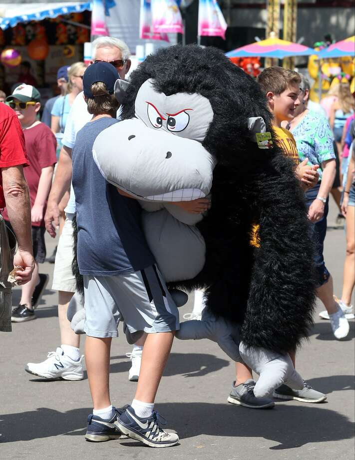Gorilla in the midst: Having won an angry stuffed ape in a midway game, Ryan Smith must now carry the gorilla wherever he goes at the Minnesota State Fair in Falcon Heights. Photo: Jim Mone, Associated Press