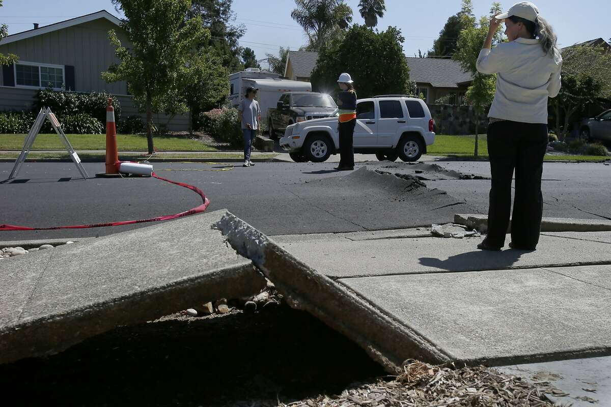 Chesley Williams (right) of RMS checks out some road and sidewalk damage on Meadowbrook Drive Tuesday August 26, 2014 in Napa, Calif. Risk Management Solutions (RMS) is a group of professionals that look at structural damage, liquefaction zones and interviews to determine the cost of the damage from an earthquake like the South Napa event.