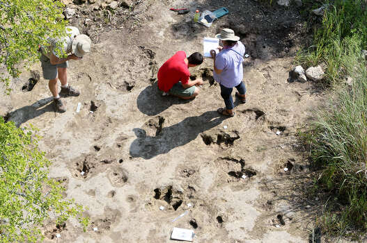 Richard Gonzalez (crouched down at center) and Diana Azouggagh (right) measure the record the Acrocanthosaurus tracks while Dr. Thomas Adams (left) photographs other theropod prints in the lower trackway at Government Canyon State Natural Area. Photo: Marvin Pfeiffer / San Antonio Express-News / Express-News 2014