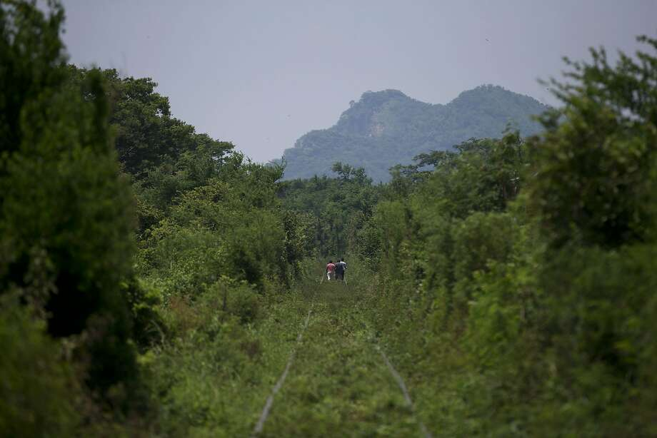 Central American migrants walk along overgrown train tracks several kilometers outside Arriaga in Chiapas state, Mexico, as they wait for a northbound freight train, Tuesday, Aug. 26, 2014. A Mexican federal official says the government plans to improve railway surveillance and increase the speed of northbound trains in hopes of deterring Central American migrants from riding on top of freight cars. (AP Photo/Rebecca Blackwell) Photo: Rebecca Blackwell, Associated Press