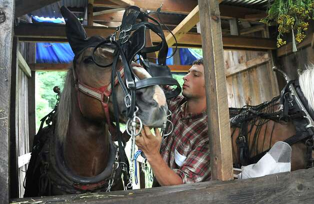 """Evan Thaler-Null, who runs Abode Farm CSA, puts a bridle on Belle before demonstrating how to hitch the horses to a plow during a media preview for Behold! New Lebanon, a """"living museum of contemporary rural life"""" at the Abode Farm Thursday, Aug. 21, 2014, in New Lebanon, N.Y. (Lori Van Buren / Times Union) Photo: Lori Van Buren / 00028264A"""