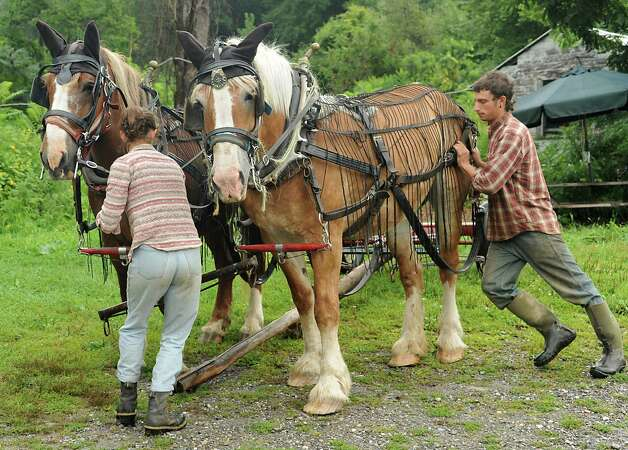 """Sarah Steadman and Evan Thaler-Null, who run Abode Farm CSA, demonstrate how to hitch the horses to a plow during a media preview for Behold! New Lebanon, a """"living museum of contemporary rural life"""" at the Abode Farm Thursday, Aug. 21, 2014, in New Lebanon, N.Y. (Lori Van Buren / Times Union) Photo: Lori Van Buren / 00028264A"""