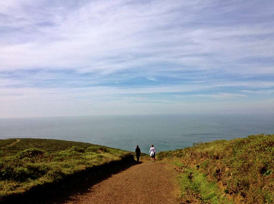 Tennessee Valley Trail: This trail is located in the Marin Headlands and is a 1.7 mile walk along the coast.  In the spring, several wildflowers are in bloom including the  lupine, checker-bloom, blue-eyed grass, California buttercup, and California poppy. For more information please visit:https://www.nps.gov/. Photo: Jessica Mullins
