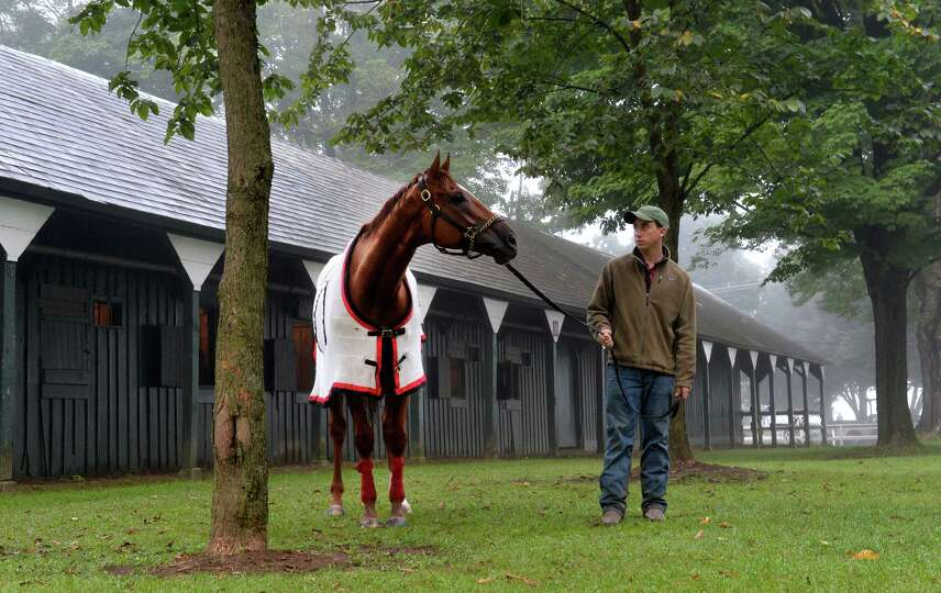 Reeve McGaughy holds two-time Horse of the Year Wise Dan as he lifts his head from grazing after his