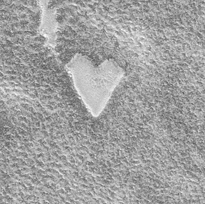 Heart-shaped mesa on surface of planet Mars in image made by Mars Global Surveyor Orbiter. Photo: Time Life Pictures, Time & Life Pictures/Getty Image / Time Life Pictures
