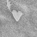 Heart-shaped mesa on surface of planet Mars in image made by Mars Global Surveyor Orbiter.