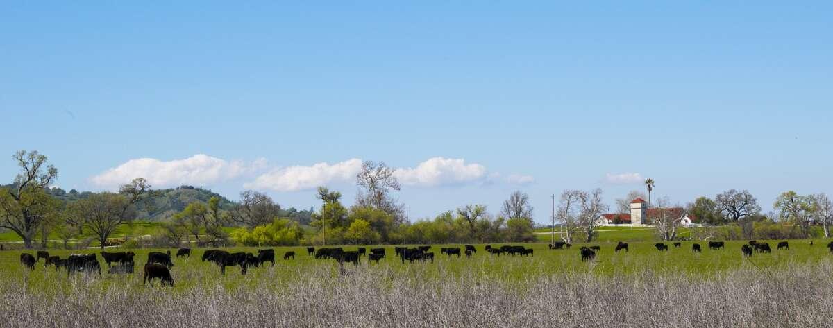 The 14,000-acre Santa Margarita Ranch is home to historically significant landmarks that include the Mission Vineyard, the Santa Margarita de Cortona Asistencia and a stretch of the original El Camino Real.