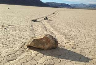 A few of the hundreds of rocks that have left trails as they moved across the surface of Racetrack Playa in California's Death Valley National Park on August 18, 2014. There were several theories for the strange activity, but Richard Norris, a paleobiologist at Scripps Institution of Oceanography, and his cousin James Norris, a research engineer, were the first to photograph rocks in motion. (Louis Sahagun/Los Angeles Times/MCT)