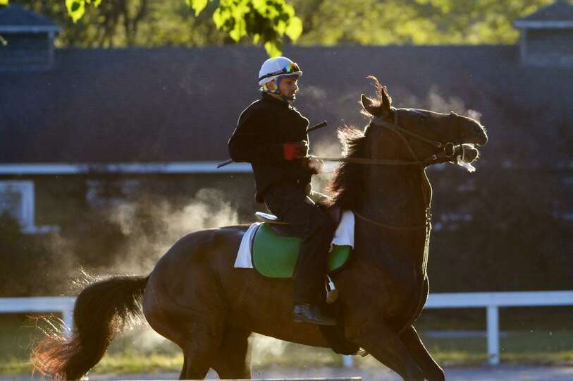 Horses are feeling frisky in the cool temperatures Friday morning at Saratoga Race Course. Fall is j