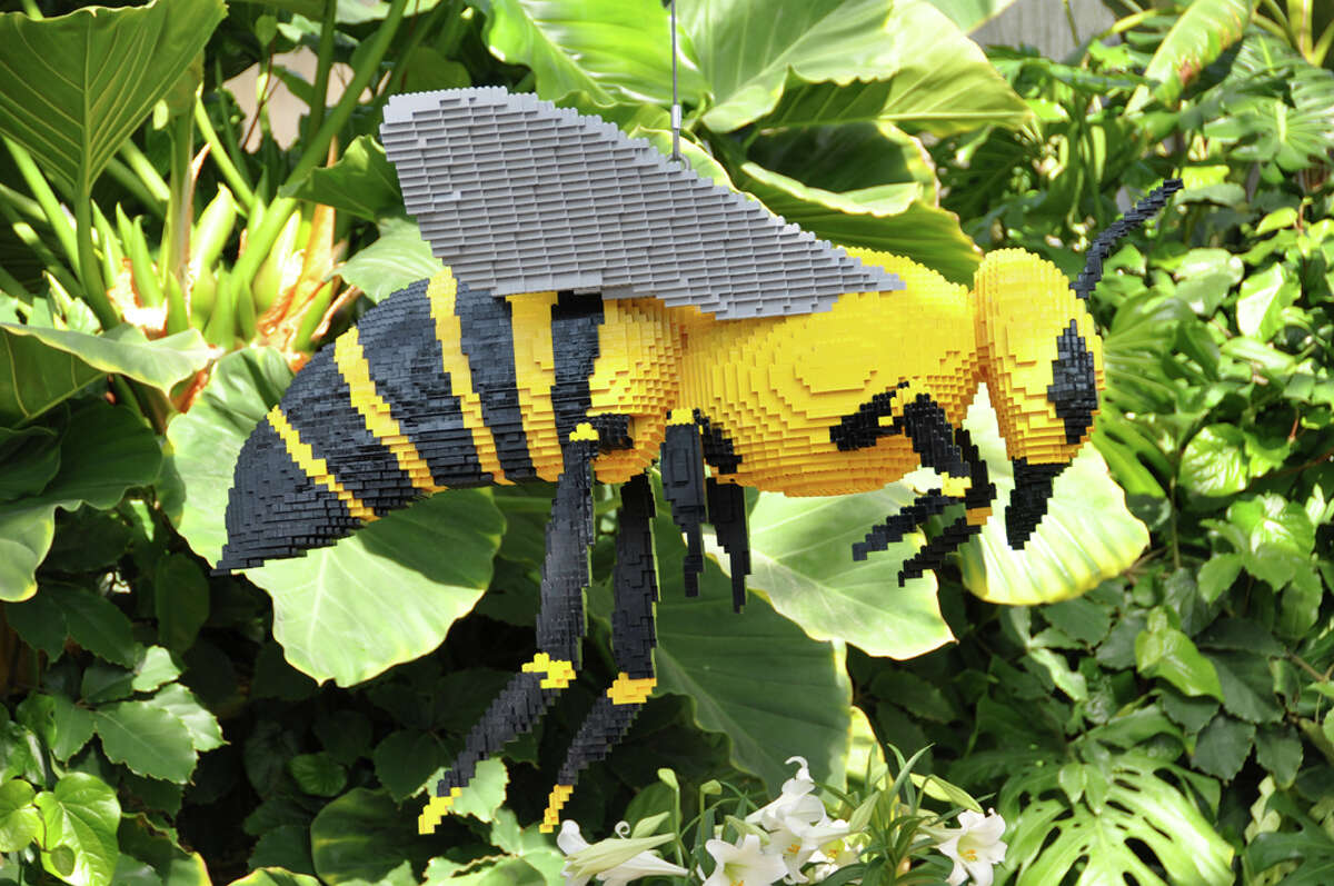 """LEGO artist Sean Kenney's bumblebee sculpture is part of his """"Nature Connects"""" exhibit, on display Sept. 6 through Jan. 4 at the San Antonio Botanical Garden."""
