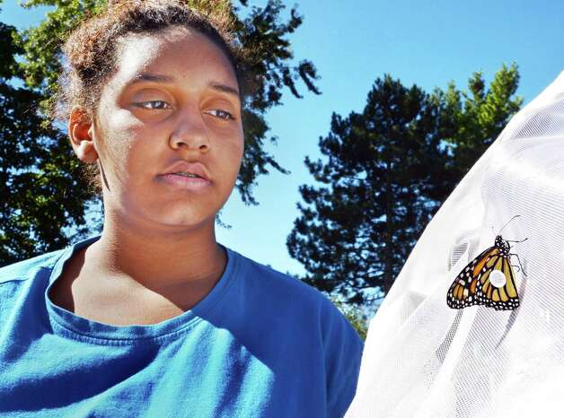 Girl Scout Aryanna Zeigler of Troy with a Monarch butterfly she tagged at the Girl Scouts of Northeastern New York Service Center Friday, Aug. 29, 2014, in Colonie, N.Y.  (John Carl D'Annibale / Times Union) Photo: John Carl D'Annibale / 00028327A