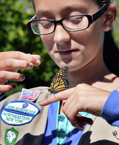 Girl Scouts Emily DelGrosso, 12, of Clifton Park, releases the Monarch butterfly she tagged at the Girl Scouts of Northeastern New York Service Center Friday Aug. 29, 2014, in Colonie, N.Y.  (John Carl D'Annibale / Times Union) Photo: John Carl D'Annibale / 00028327A