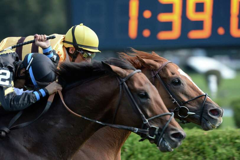 Two-time horse of the year Wise Dan with jockey John Velazquez in the saddle sticks his nose in fron
