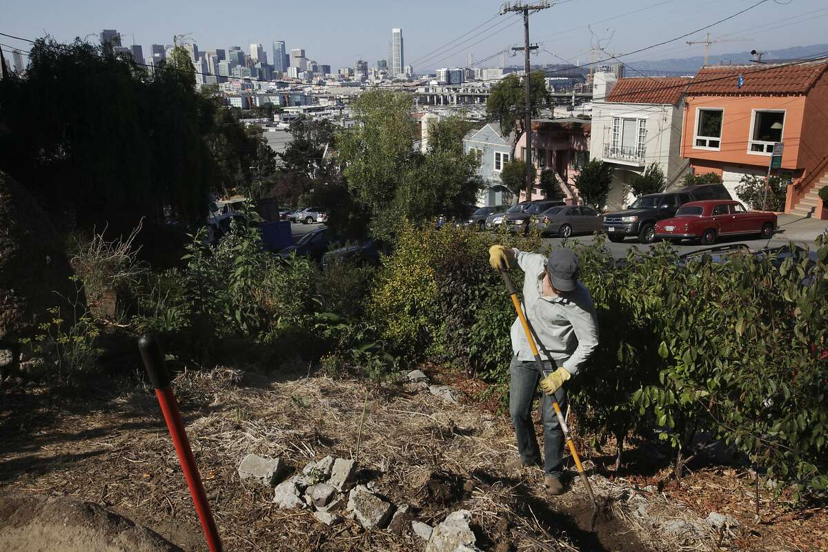 Kevin Bayuk, 36, a teacher at the Urban Permaculture Institute of San Francisco, starts work on a new bed at the 18th and Rhode Island garden Aug. 27, 2014 in San Francisco, Calif. The garden was started in October 2008 by residents and students from the Urban Permaculture Institute of San Francisco. The garden, which is owned by a private landowner and grows an assortment of fruits and vegetables, is kept up by volunteers.