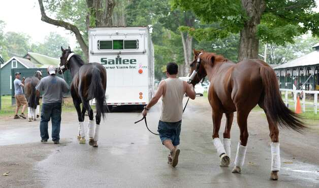 Horse from the LoPresti racing stable line up to board a waiting van with one day left in the meeting Aug. 31, 2014 at the Saratoga Race Course in Saratoga Springs, N.Y.     (Skip Dickstein/Times Union) Photo: SKIP DICKSTEIN
