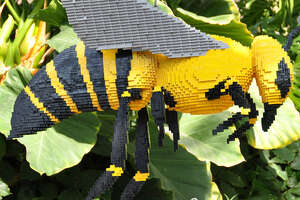 Kenney's 4-foot-long LEGO bee shows how pollinators affect our food sources.