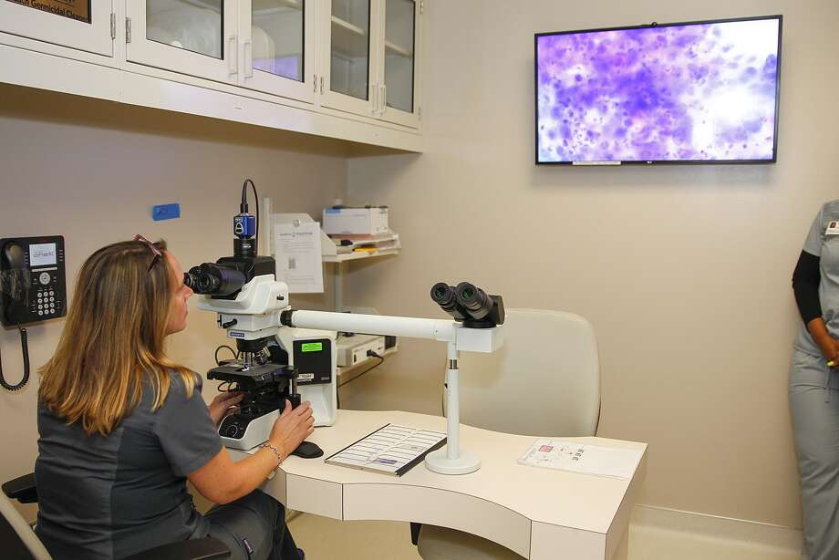 CT technologist Rhonda Bridges displays abnormal breast cells on screen in the Cytology Lab at the MD Anderson Diagnostic Imaging Center in west Houston.CT technologist Rhonda Bridges displays abnormal breast cells on screen in the Cytology Lab at the MD Anderson Diagnostic Imaging Center in west Houston. Photo: Diana L. Porter, Freelance / © Diana L. Porter