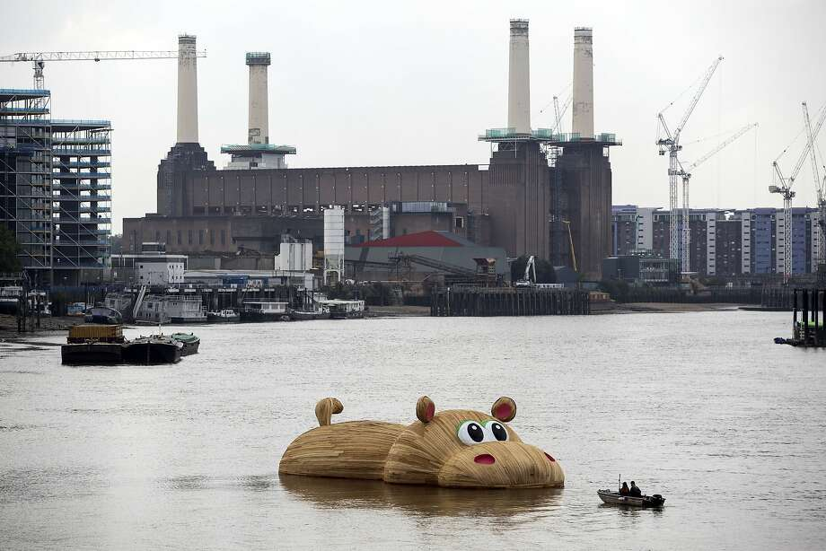 Paddle harder! An oversized wooden hippopotamus created by Dutch artist Florentijn Hofman floats in the Thames in London. Hofman, whose enormous rubber ducky was a hit last year, recently unveiled a really big rabbit in Taiwan, making him the undisputed world leader in sculpting giant cartoon animals. Photo: Jack Taylor, AFP/Getty Images