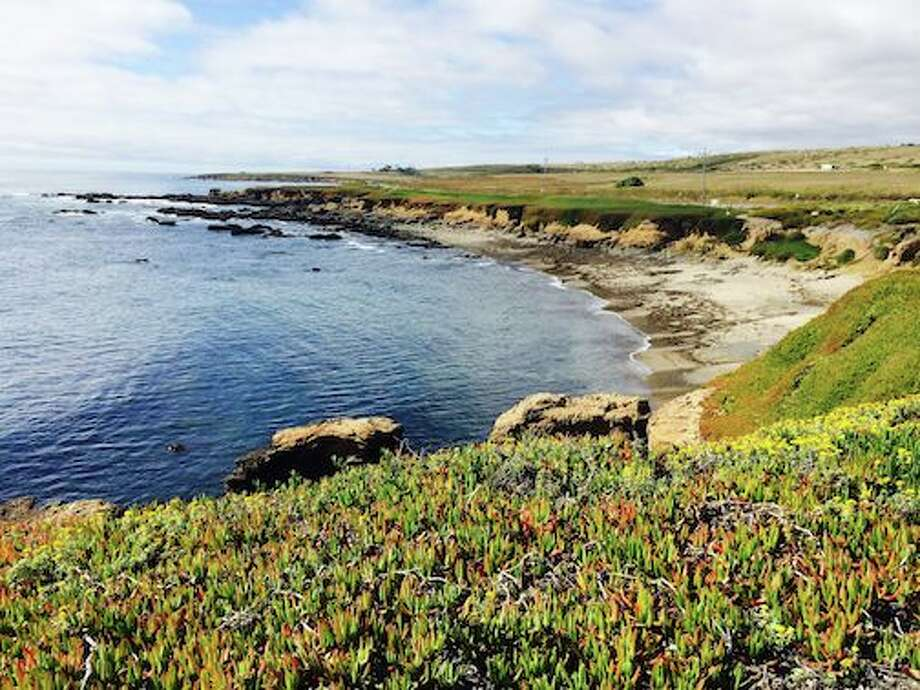 Classic charms Open space: The mile of San Mateo County beachfront seen stretching north from Pigeon Point to Bolsa Point will never be developed, thanks to the acquisition of the former Lighthouse Ranch by Peninsula Open Space Trust in 2000.  It was part of a 1,719-acre, $39 million purchase the agency made to help protect the pristine landscape around historic Pigeon Point Lighthouse, south of the town of Pescadero. Photo: Jeanne Cooper / SFGate