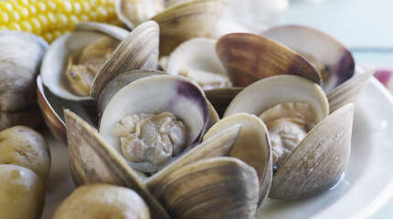 Clam Bake with corn on the cob