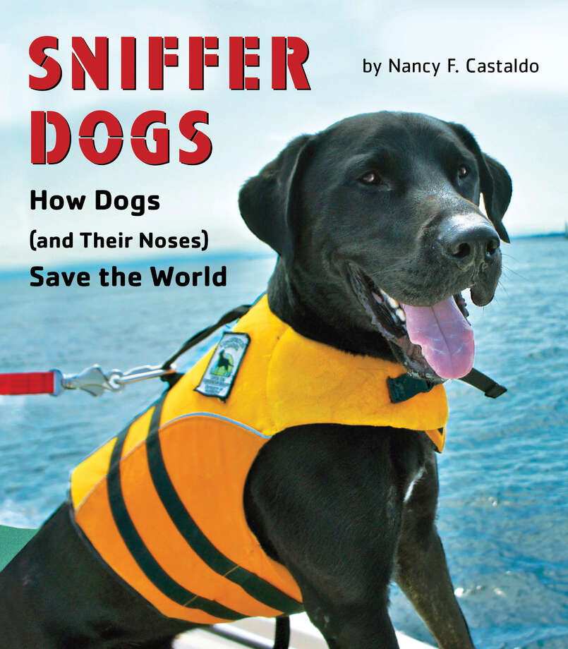 """Sniffer Dogs"" is about dogs performing various important duties."