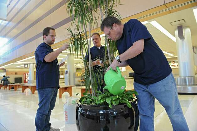 Jake Grimm of Rexford, left, and Lance Stewart of Schenectady, right, work at watering and maintaining the plants in the Albany International Airport terminal on Wednesday, Sept. 3, 2014 in Colonie, N.Y. Wayne Peterson, mobile work crew supervisor from Schenctady ARC, center, watches over the workers. The airport works with the New York State Institute on Disability to find job opportunities for its clients. (Lori Van Buren / Times Union) Photo: Lori Van Buren / 00028406A