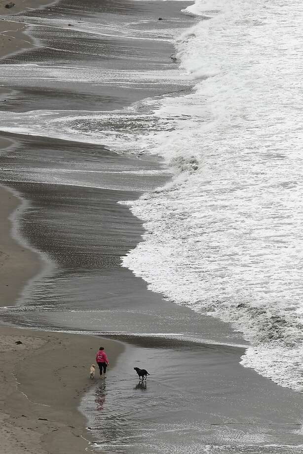 Above: A woman walks her dogs on Muir Beach. People who live in the area fear that the National Park Service is ignoring their concerns. Photo: Michael Short, The Chronicle