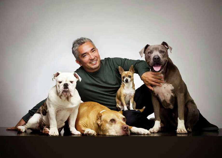 """Cesar Millan, """"The Dog Whisperer,"""" will reveal his secrets of a happier and healthier relationship between humans and their canine friends.When: Saturday, 8:00 p.m. Where: Proctors. Learn More."""