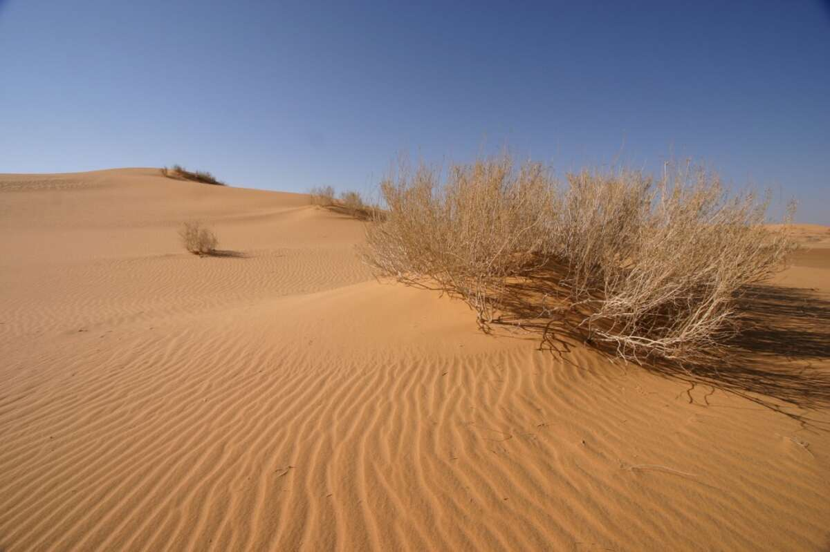 The South Ghawar Basin in Saudi Arabia.