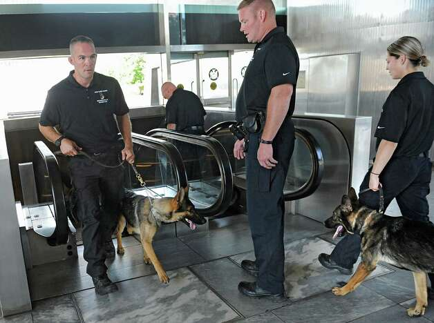 More than two dozen New York State Trooper handlers and their canines from across New York State participate in a training exercise at the Empire State Plaza on Wednesday, Sept. 10, 2014 in Albany, N.Y. Here they are practicing riding an escalator with the canines. (Lori Van Buren / Times Union) Photo: Lori Van Buren / 00028543A