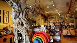 Paxton Gate's Curiosities for Kids in San Francisco.