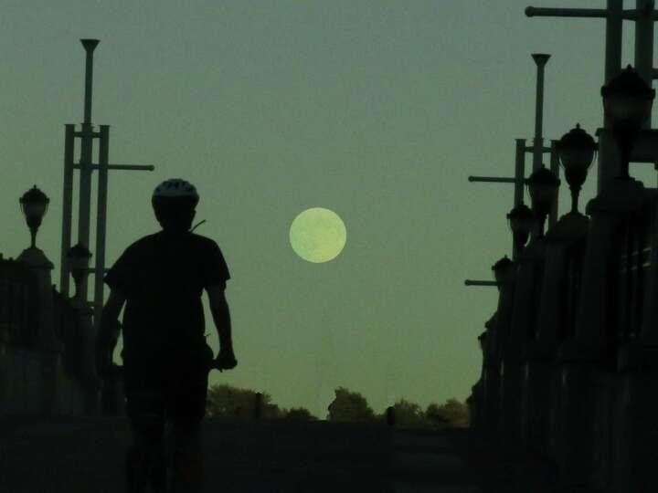 Bicyclist near Jennings' Landing in Albany riding towards the rising harvest moon. (Richard Shore)