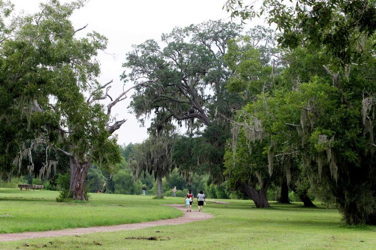 Planting American elm, green ash and other native trees to roughly 1,000 acres of grasslands north of Brazos Bend State Park, above, could clean tons of pollution from Houston's air, a study says. But some scientists are skeptical about possible results.