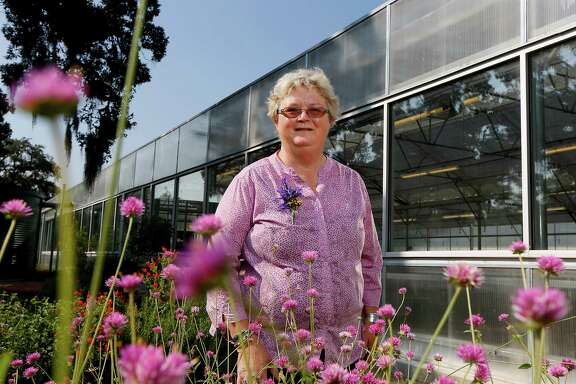 Houston's senior superintendent of horticulture services' Dee Howell stands among the blooms in the demonstration garden surrounding the city greenhouse.