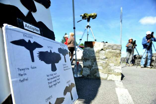 An board showing silhouettes of birds is seen at John Boyd Thacher State Park during the Helderberg Escarpment Hawk Watch on Monday, Sept. 15, 2014, in New Scotland, N.Y.   (Paul Buckowski / Times Union) Photo: Paul Buckowski / 00028617A