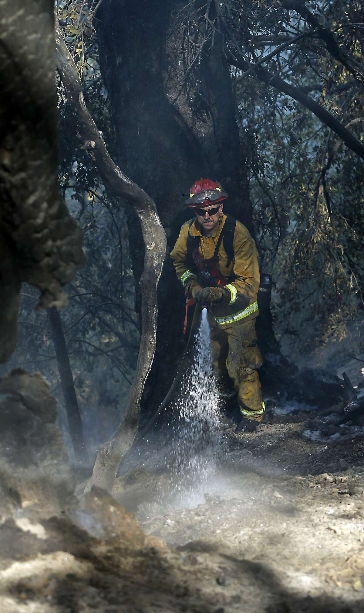 Firefighter Randy Browning hoses down a hot spot of a fire near Pollack Pines, Calif., Monday, Sept. 15, 2014. The fire, which started Sunday has consumed more than 3,000 acres and forced the evacuation of dozens of homes.(AP Photo/Rich Pedroncelli)