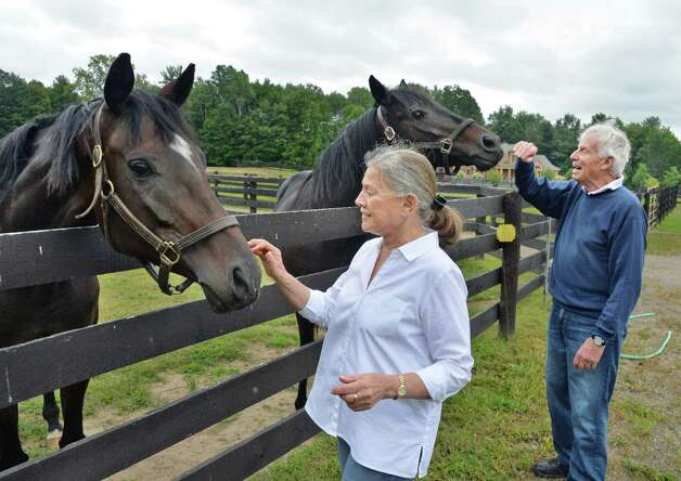 Suzann and Peter Bobley with two of their retired thoroughbred race horses Luvacat, left, and Eye'm Distinction at one of the paddocks at their stable for retired thoroughbred race horses, 18 Karat Farm, Thursday Sept. 11, 2014, in Schuylerville, NY.  (John Carl D'Annibale / Times Union) Photo: John Carl D'Annibale / 00028571A