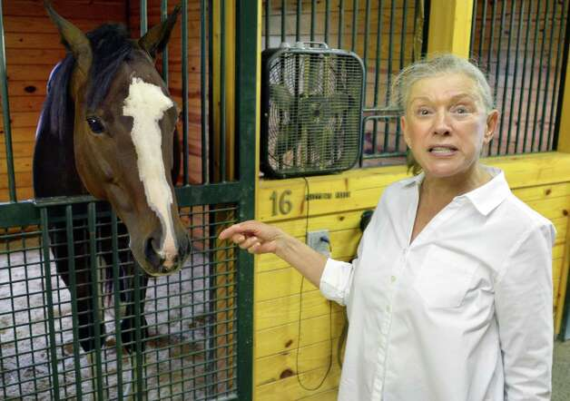 Suzann Bobley with one of her retired thoroughbred race horses, Pretty Boy Freud in the stables at her stable for retired thoroughbred race horses, 18 Karrot Farm, Thursday Sept. 11, 2014, in Schuylerville, NY.  (John Carl D'Annibale / Times Union) Photo: John Carl D'Annibale / 00028571A