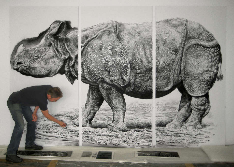 """Rick Shaefer: Rendering Nature""  is on view at the Bellarmine Museum of Art, in Fairfield, through Dec. 19. The collection includes dramatic paintings of clouds and life-size charcoal drawings of bison, rhinoceros and crows. Photo: Contributed Photo / Connecticut Post Contributed"