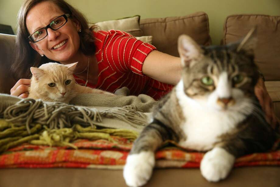 Old boys need love too:Harry (left) and Moses, a pair of senior cats, relax with their owner,   Maria Pfeiffer, at their home in Manhattan. Older cats and dogs are often deemed   unadoptable because of their age, but they can be just as delightful as their younger   counterparts. Photo: E. Jason Wambsgans, McClatchy-Tribune News Service