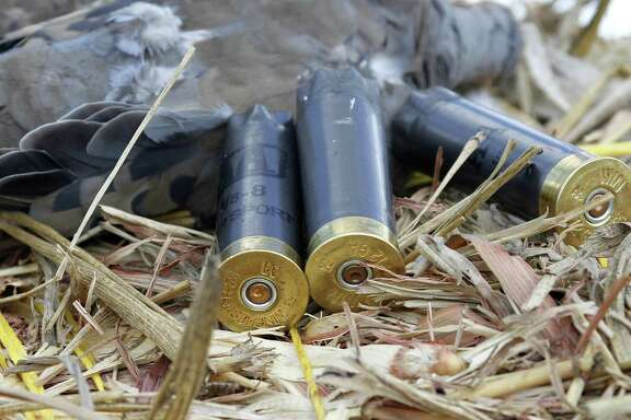 Using shotshells holding lead shot is legal when hunting doves, but not when hunting waterfowl such as teal. Texas wingshooters who possess lead shotshells risk a citation that could cost them as much as $500.