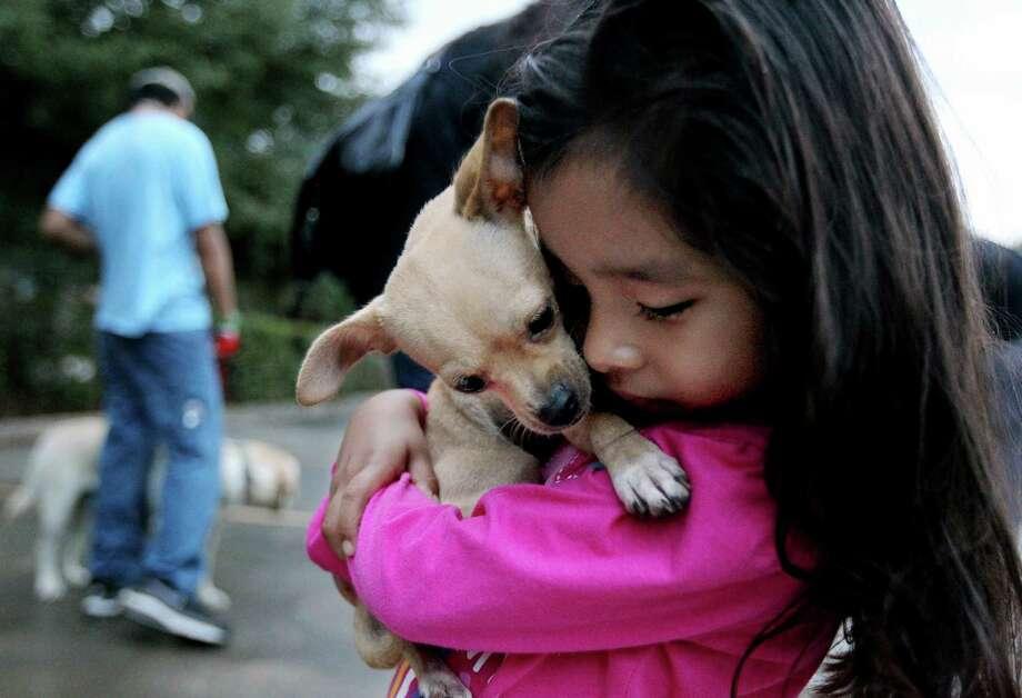 Fernanda Guerrero, 4, comforts her pet Chihuahua, Luna, at the SNAP Mobile Clinic on Thursday. Photo: Gary Coronado, Staff / © 2014 Houston Chronicle