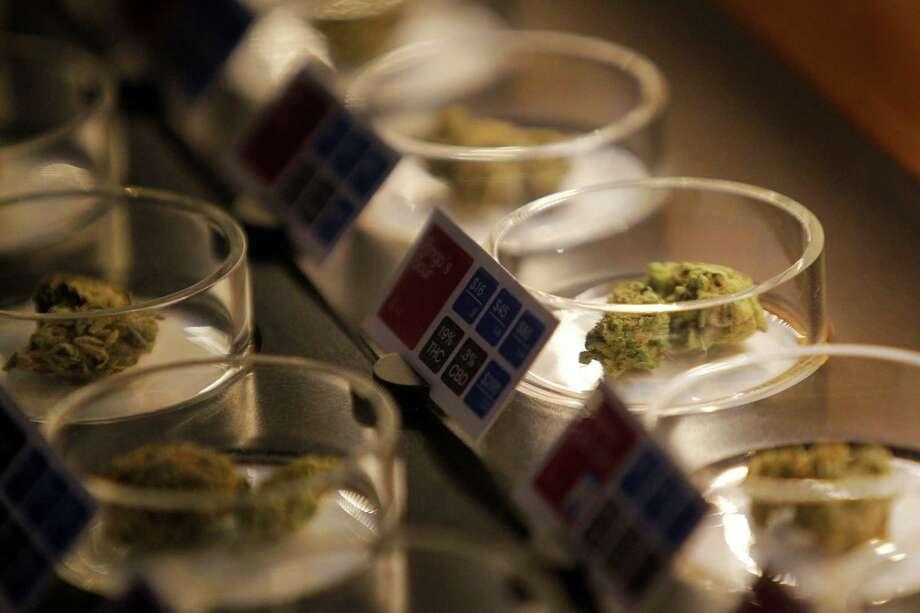 pro legalization marijuana research paper Marijuana term papers (paper 7728) on legalization of marijuana-: legalization of marijuana- the purpose of this paper is to discuss marijuana.
