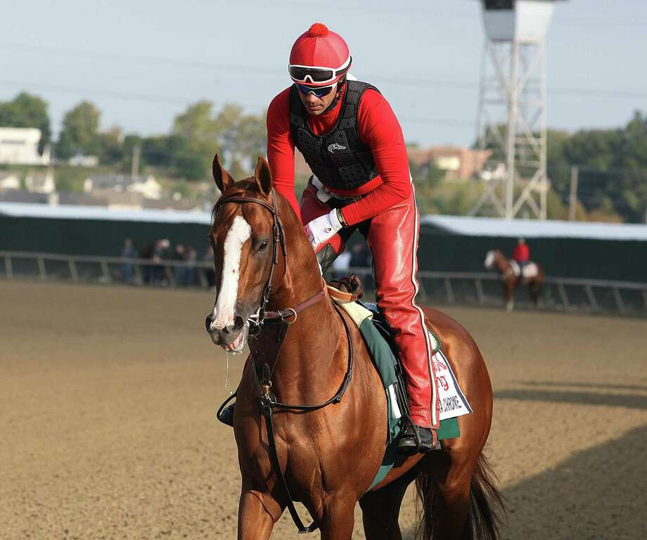 In this image provided by Equi-Photo, Kentucky Derby and Preakness Stakes winner California Chrome, with exercise rider Willie Delgado up, makes his way onto the track at Parx Racing in Bensalem, Pa., Friday morning, Sept. 19, 2014.  California Chrome is scheduled to run in Saturday's $1,000,000 Pennsylvania Derby horse race at the track. (AP Photo/Equi-Photo, Bill Denver) ORG XMIT: PPR101 Photo: Bill Denver / Equi-Photo
