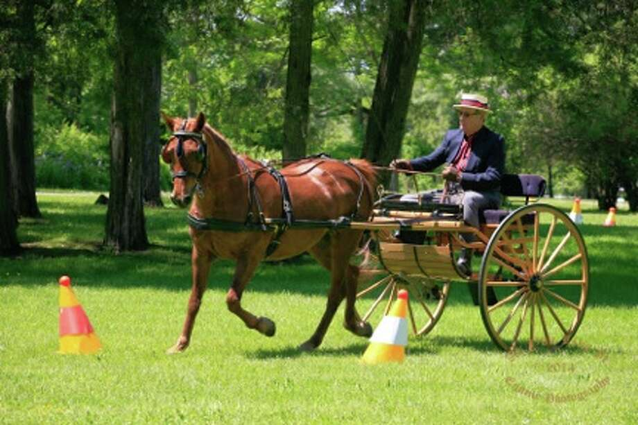 On October 4 and 5, 2014, the Saratoga Driving Association will hold it?s 17th annual Carriage Driving Competition at Akers Acres, 237 State Farm Road, Valatie, NY. (Submitted photo)