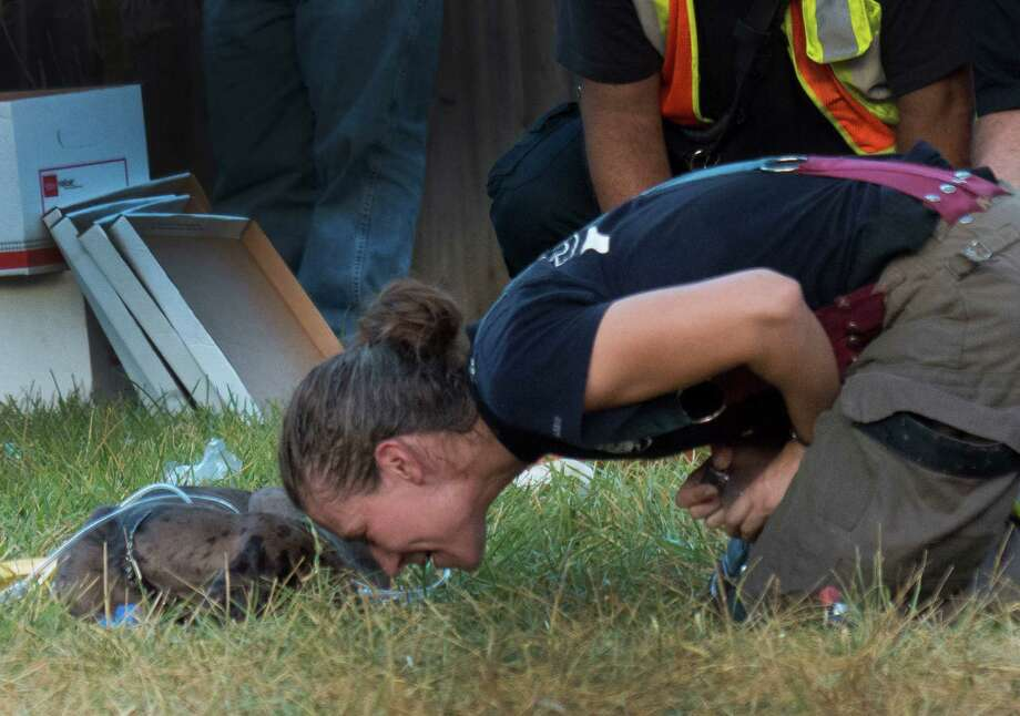 San Antonio firefighter Dawn Solinski comforts a dog that was in a house that was gutted by fire on Floral Way on Saturday, Sept. 20, 2014. The dog was hurt and treated at the scene. Photo: Billy Calzada, Express-News / San Antonio Express-News