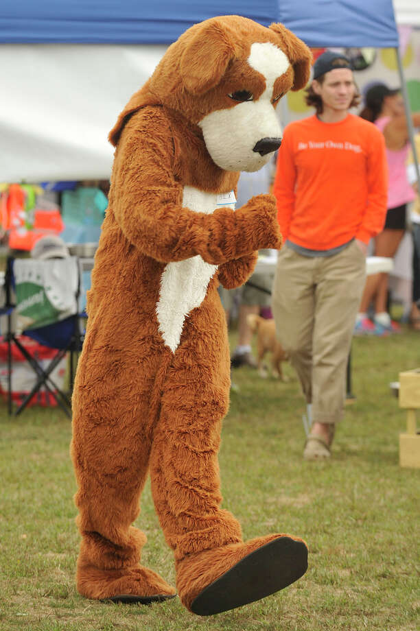Scenes from the Adopt-A-Dog's annual Puttin' on the Dog Festival of Fun at Roger Sherman Baldwin Park in Greenwich, Conn., on Sunday, Sept. 21, 2014. Photo: Jason Rearick / Stamford Advocate