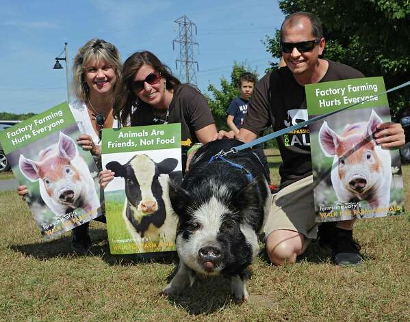 From left, Valerie Lang-Waldin of Averill Park, Jennifer Ali and John Green pet Charlie, a pig from Halfmoon, at The Albany Walk for Farm Animals fundraiser at The Crossings of Colonie on Sunday, Sept. 21, 2014 in Colonie, N.Y. For more than 25 years, Farm Sanctuary has rescued and provided sanctuary for abused farm animals, educated the public about the routine cruelty they endure on factory farms, and advocated on their behalf. The Walks bring together thousands of people from different backgrounds in cities all across the U.S. and Canada to raise vital funds to support the organizationOs life-saving work and promote kindness towards farm animals. (Lori Van Buren / Times Union) Photo: Lori Van Buren / 00028631A